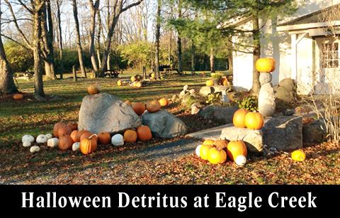 Halloween Detritus at Eagle Creek