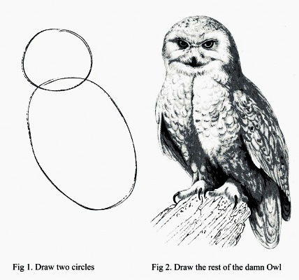 HowToDrawOwl